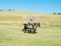 A caballo por el campo en Zamora