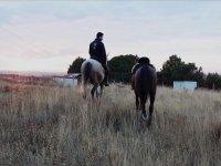 Paseando a los caballos al atardecer