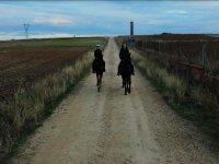 Ruta ecuestre por los caminos de Zamora