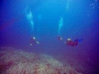 De excursión marina en Alcúdia