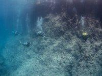 De camino a las cuevas submarinas