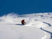 与单板滑雪单板滑雪届马德里