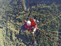 Volando en parapente sobre la arboleda