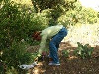 照顾生态花园