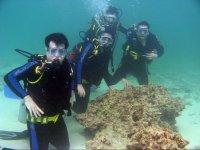 Gruppo di subacquei sommersi