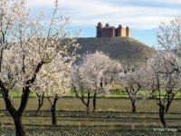 Castillo en la Comarca de GUadix
