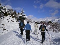 特拉韦西亚雪鞋在雪地