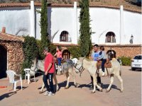 Niños sobres los burros