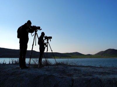 Mirua Actividades de Naturaleza Ornitología