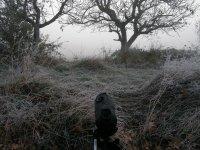 Amanecer fresquito en Lumbier Navarra