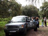 Vehiculos detenidos junto al arbol