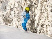 Snowboard con una zona de snowpark