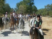 Group tours from El Escorial