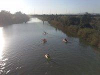Excursion en kayaks