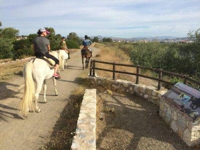 Sun aventure Turismo Activo S.L Rutas a Caballo