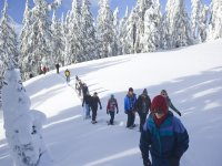 Group excursion with snowshoes