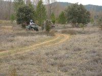 quad route