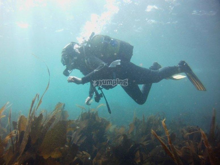 享受潜水活动