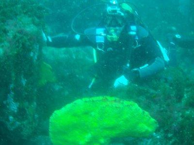 Dos inmersiones + dos cargas de aire en Finisterre