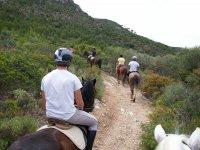 Ruta ascendente con los caballos