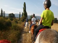 Paseos a caballo con casco