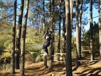 Aventura en los arboles en los Montes de Toledo