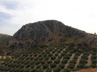 Archidona trails