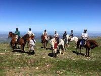 Dia soleado con los caballos
