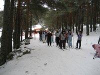 Grupo haciendo esquí de fondo