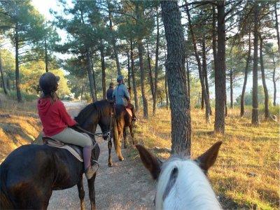 60m Horseback Route, Cumbres del Guadarrama