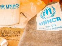 自己生产的食品难民