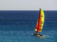 风力驱动的帆船彪猫帆船航行