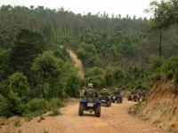 Rutas en quad por pistas forestales