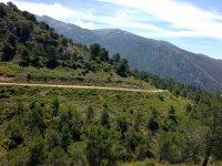 parque natural sierra tejeda con sendero