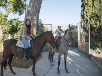 ninos y caballos