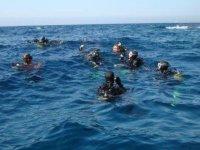 Buceadores en la superficie marina
