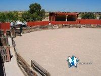 Nuestra plaza de toros para capeas