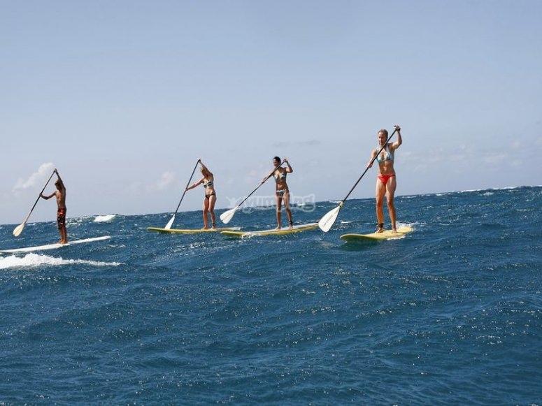 Cursos de paddle surf