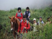 Horse riding routes for children