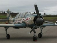 avion combate