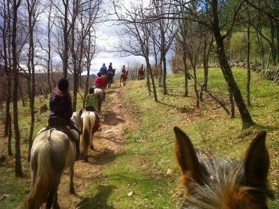 Viajes Madroño Rutas a Caballo