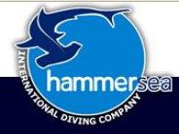 Hammersea Team Building