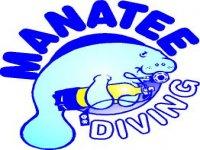Manatee Diving