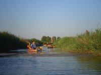En kayak entre los juncos