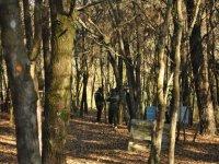 Diversión en el bosque