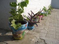 Hand-decorated flower pots