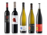 recorte vinos