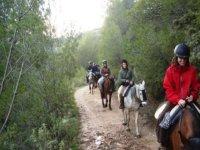 Rutas a caballo Brion