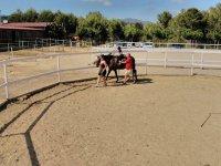 picadero montando a caballo