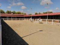 骑马驰骋赛场骑两匹马